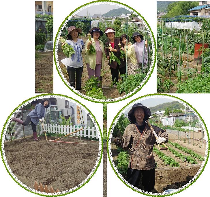 農的生活イメージ